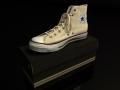 shoe02